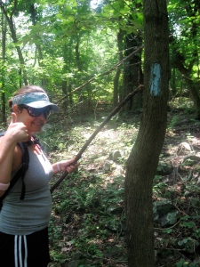 Tracy pointing out the correct trail