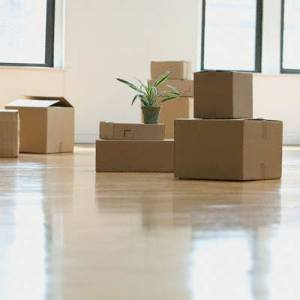 CM8ANSHJ1packers_and_movers_services